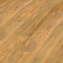 Golden Canadian Oak